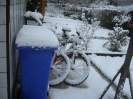 Winter_4